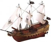 Un nouveau pirate