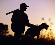 Un chasseur aux abois