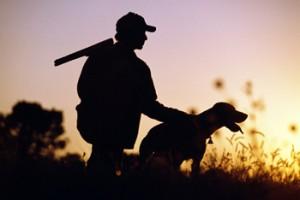 chasseur-chien